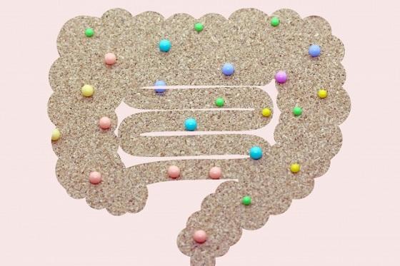 自律神経と腸